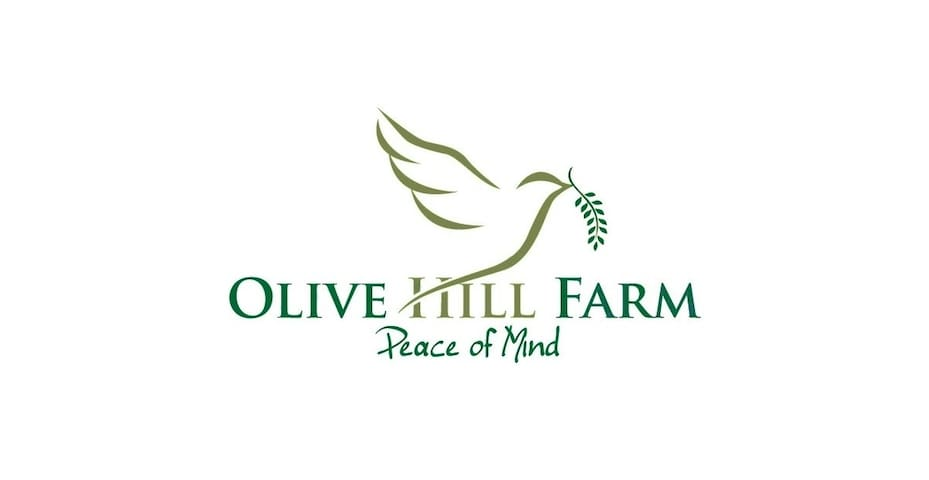 Olive Hill Farmstay Bed and Breakfast