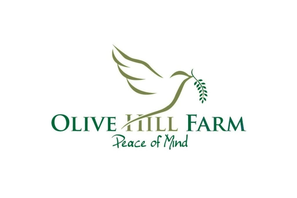 olivehill chatrooms Gregory rose is on facebook join facebook to connect with gregory rose and others you may know facebook gives people the power to share and makes the.