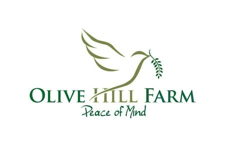 Olive Hill Farmstay Bed & Breakfast - Bed & Breakfast