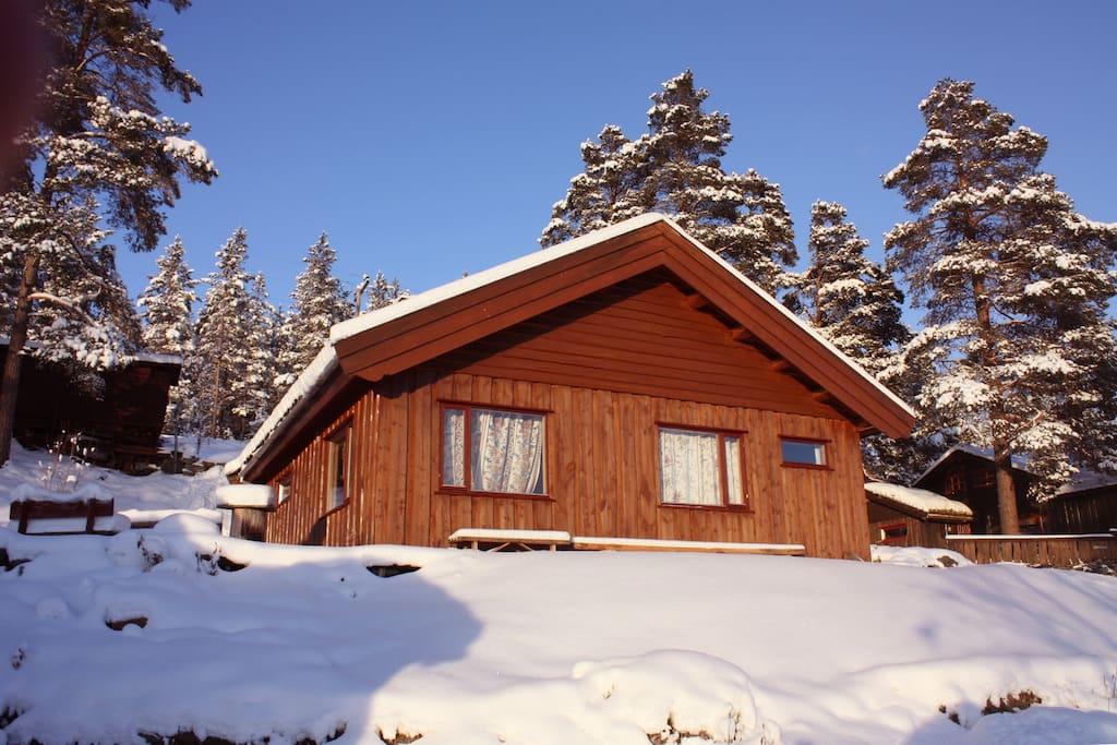 Her i fjellbygda Heidal 750 moh øverst i Gudbrandsdalen, kan du få det beste av naturopplevelser. Vi kan nevne: Rafting i Sjoa, juv - vandring, Ypperlig Utgangspunkt for fjellturer i Heidal, Jotunheimen, Rondane og Dovrefjell (Snøhetta). oppkjørte skiløyper i fleng, 12 min. til Lemonsjø Alpinsenter ved porten av Jotunheimen, seterbesøk, gardsbesøk, og mye mer!