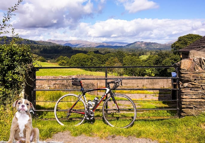 Walkers, cyclists and dog lovers' paradise.