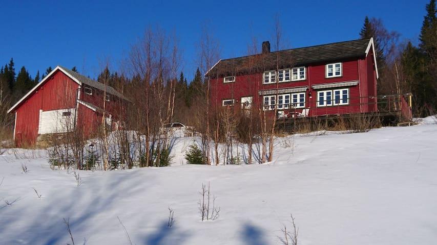 Sjarmerende gammelt småbruk i Ålen