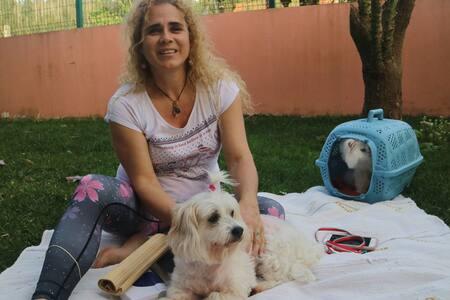 Casa de Campo São Martinho - Reencontre-se!!