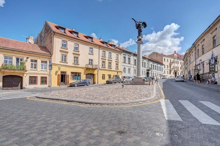 Amazing Flat in the Heart of Vilnius