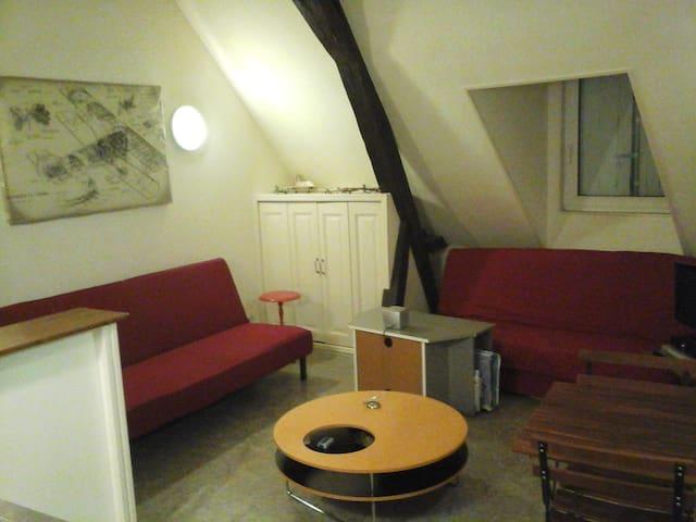 Studio Meublé - Saint-Aignan-sur-Cher - Huoneisto
