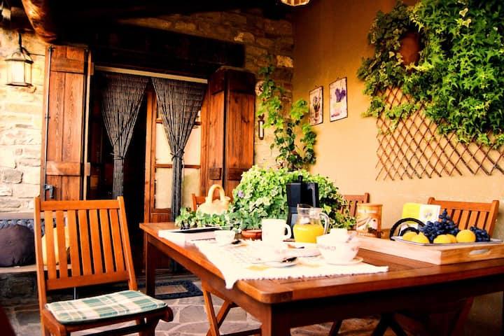 Ven y disfruta del Pirineo en Casa Rural Pedro