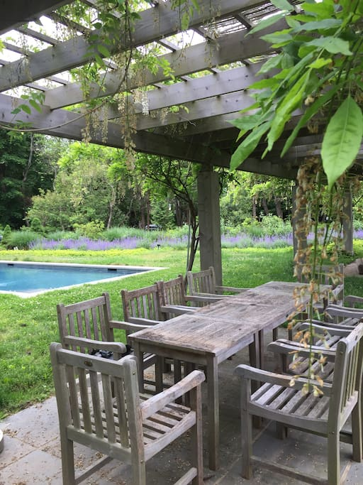 Outdoor dining and lounging by the heated pool - shared
