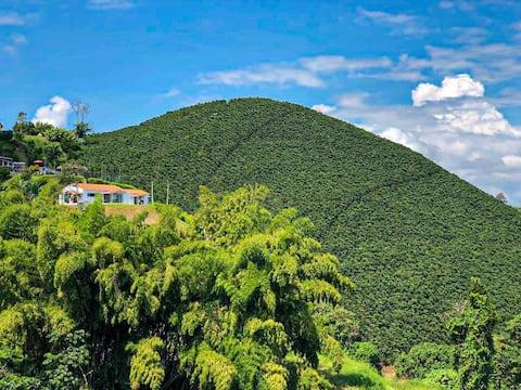 Mirador de Majagua Estate - Coffee Axis!