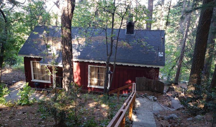 Classic 1936 Woodsy Cabin w/ Stone Fireplace