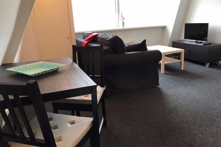Comfortable Private Apartment at Good Location