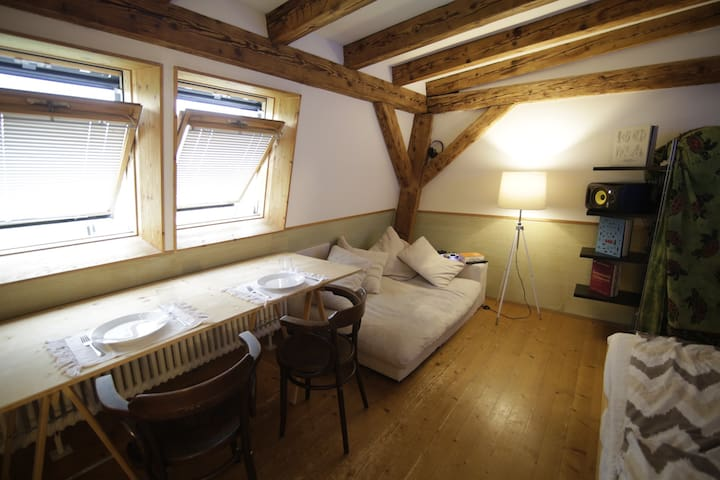 Cozy studio-room near the river - Basel - Loft