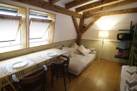 Cozy studio-room near the river - Basilea