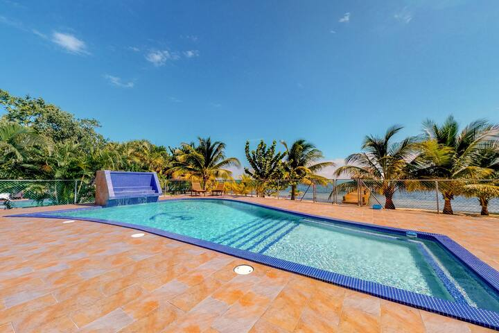Beachfront apartment with great views, kitchenette, and shared pool!