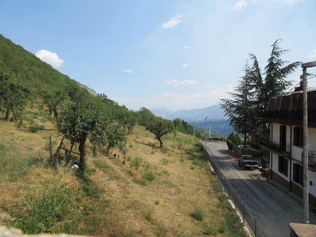 "Panoramica in Montagna ""Panoramic Mountain Views"""