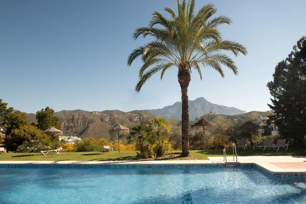 Pool & mountain view