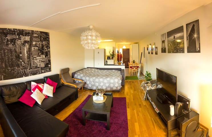 Nice and cozy apartment in central Helsingborg