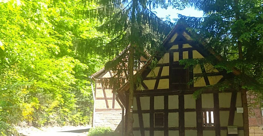 Papiermühle-Naturhof-Ferienzimmer 2
