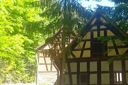 Papiermühle-Naturhof-Ferienzimmer-Rosenrot