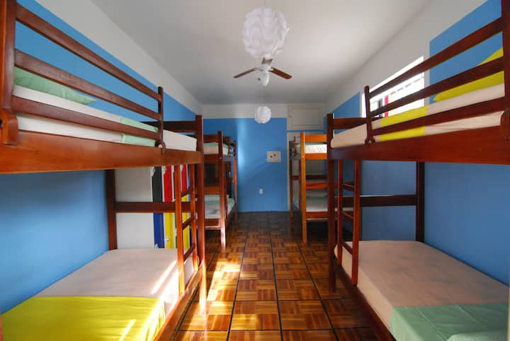 8 bed mixed dorm shared bathroom