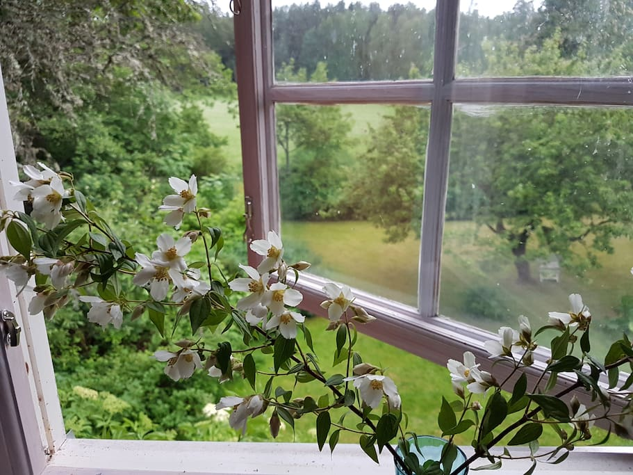 View over the garden from the bedroom