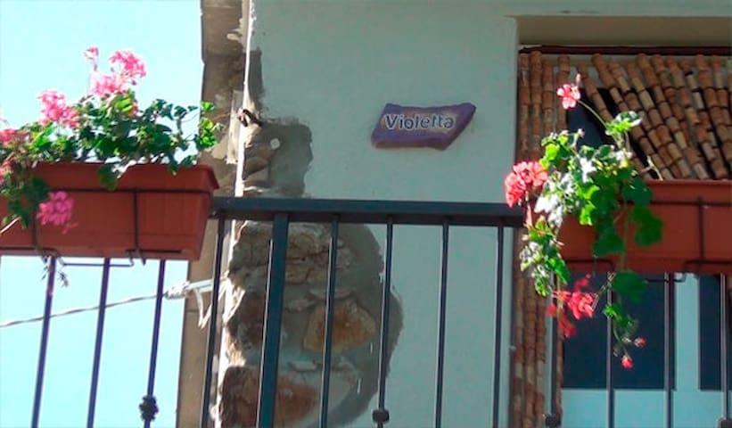 Agritourism near Cinque Terre - Masignano - Leilighet