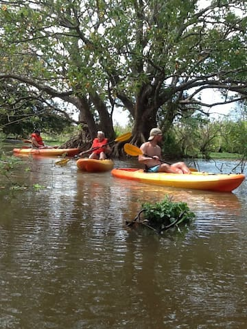 Kayaking in the River Istiam Wildlife Refuge. We can arrange your tours and transport too.