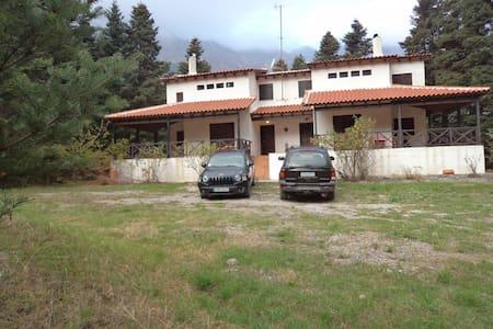 Παρνασσός στη μέση ενός ελατοδάσους - Eptalofos - Villa