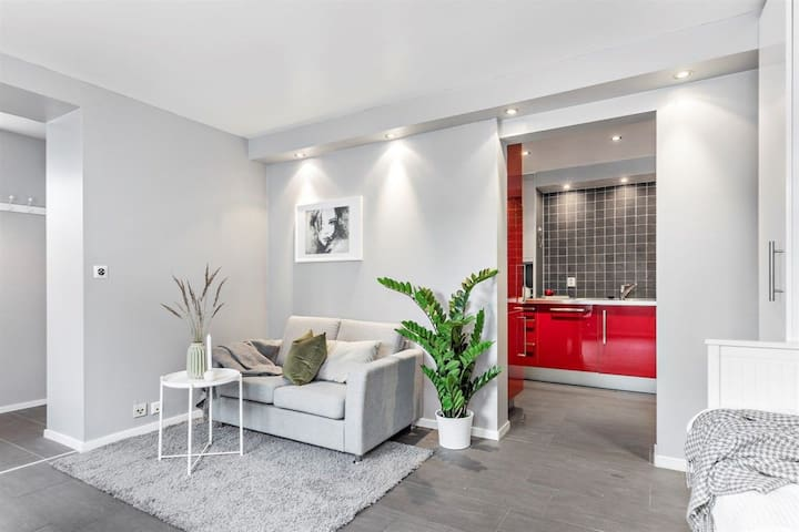 Stylish and modern apartment with great location