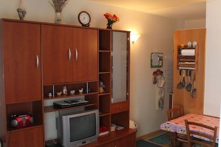 Studio à GOURETTE Résidence Le Sanctus +parking - Eaux-Bonnes - Apartment