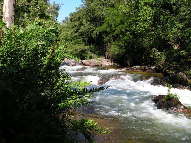 La rivière du Prunelli, devant la maison.