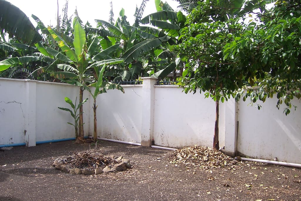 Large peaceful garden with banana trees, fire-pit and room for secure parking.