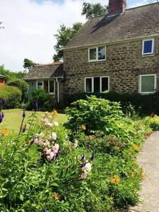 Meadow Cottage, Bridport, Dorset - Bridport