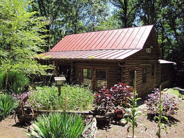 A real log cabin nestled in a piney woods!