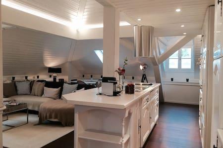 Best loft in Geneva - Carouge
