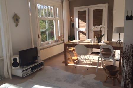 Sunny apartment in Amsterdam! - Amsterdam