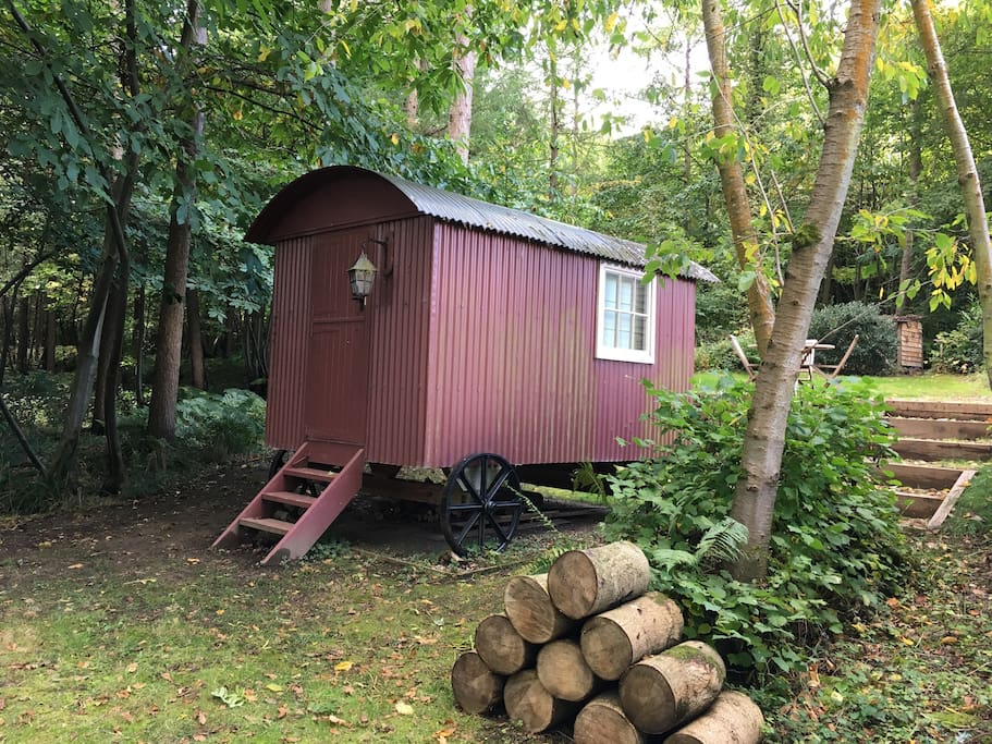 The shepherd's hut, with full size double bed, & electricity.