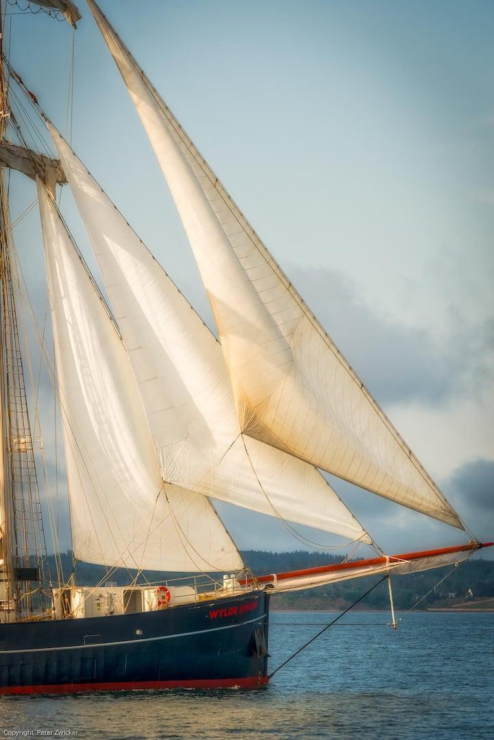 See sailing ships