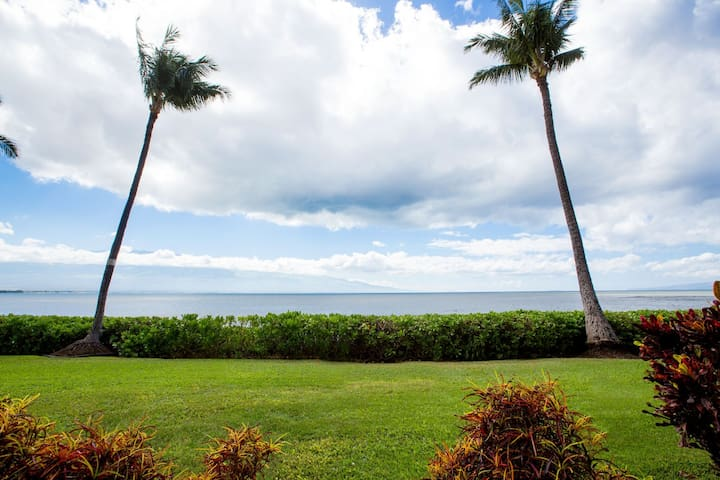 View straight from the oceanfront lanai.  Watch turtles, dolphins, and during the winter months, humpback whales!