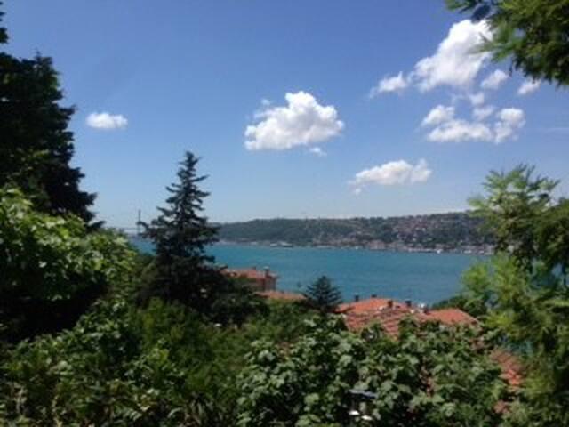 Gorgeous Town house in Bosphorus coast