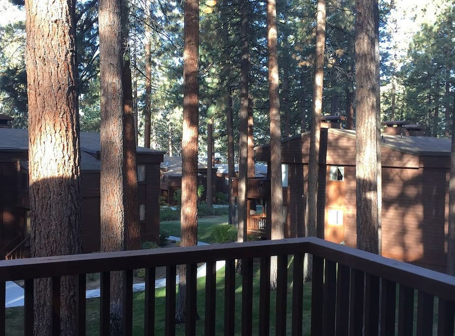 Stay in our Tahoe condo nestled in the trees!