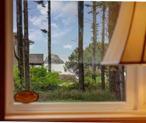 Ocean View - North Coast Nature Cottage in forest