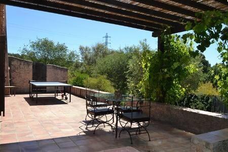 Big and quiet Villa in an olive grove - La Roquette-sur-Siagne - Villa
