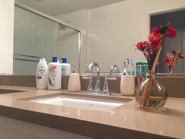 2 Bedroom 2 Bathroom Luxury Apartment Home
