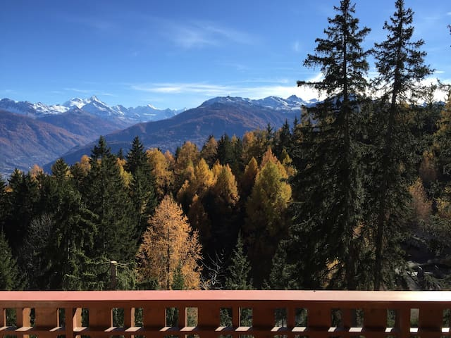 Superb View Apt in Crans-Montana - Crans-Montana - Apartament
