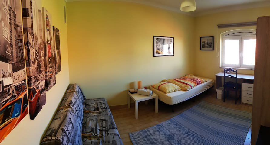 View of the room with single bed, sofa bed and desk.