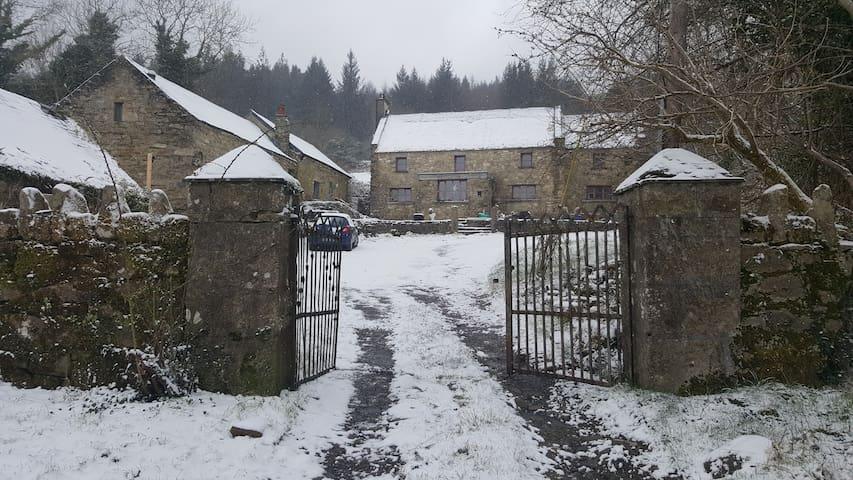 Ballyogan Doors - hide-away in converted barn.