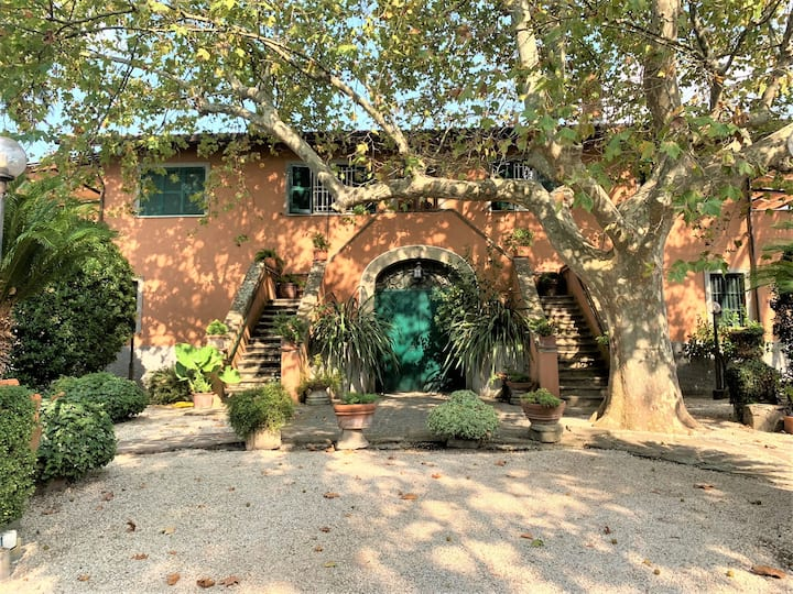 Villa Capri Bernabei, Domus Romana