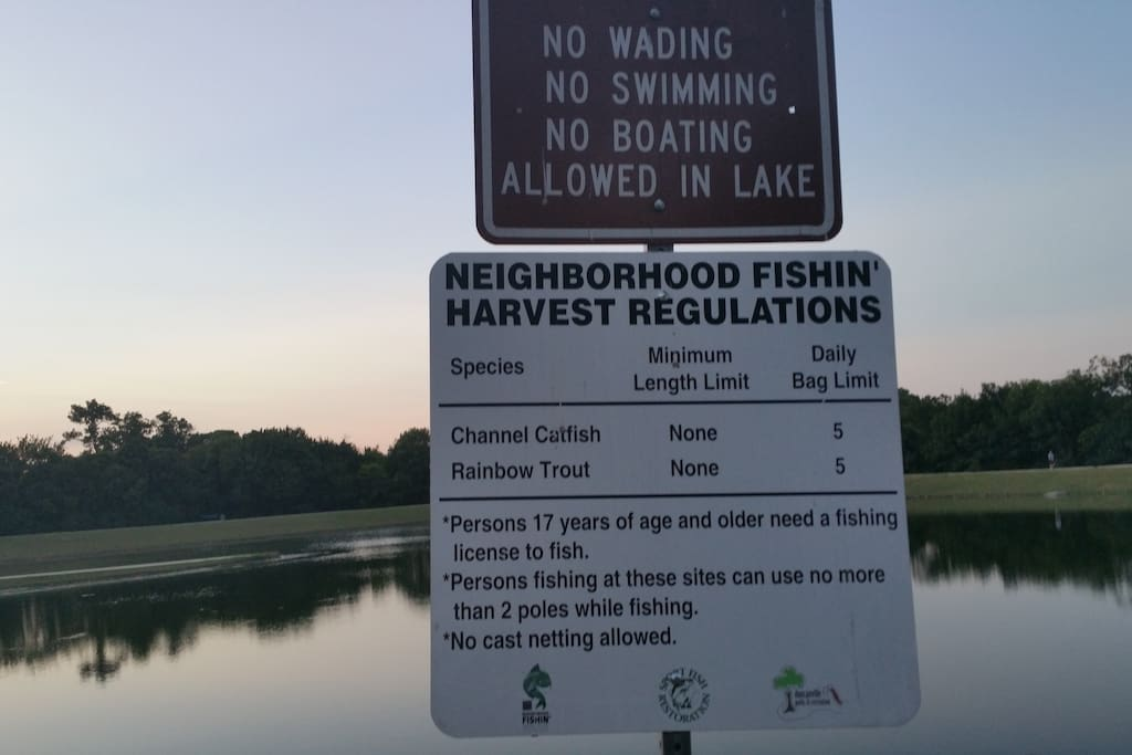 Guess what, you can fish here.