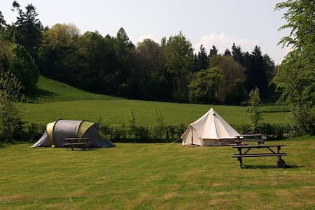 Beautiful rural field for camping - Kingsland