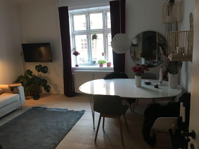 Lækker beliggenhed i Århus